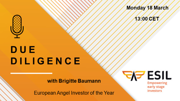 Due Diligence – Next ESIL Webinar - Monday 18th March at 13h